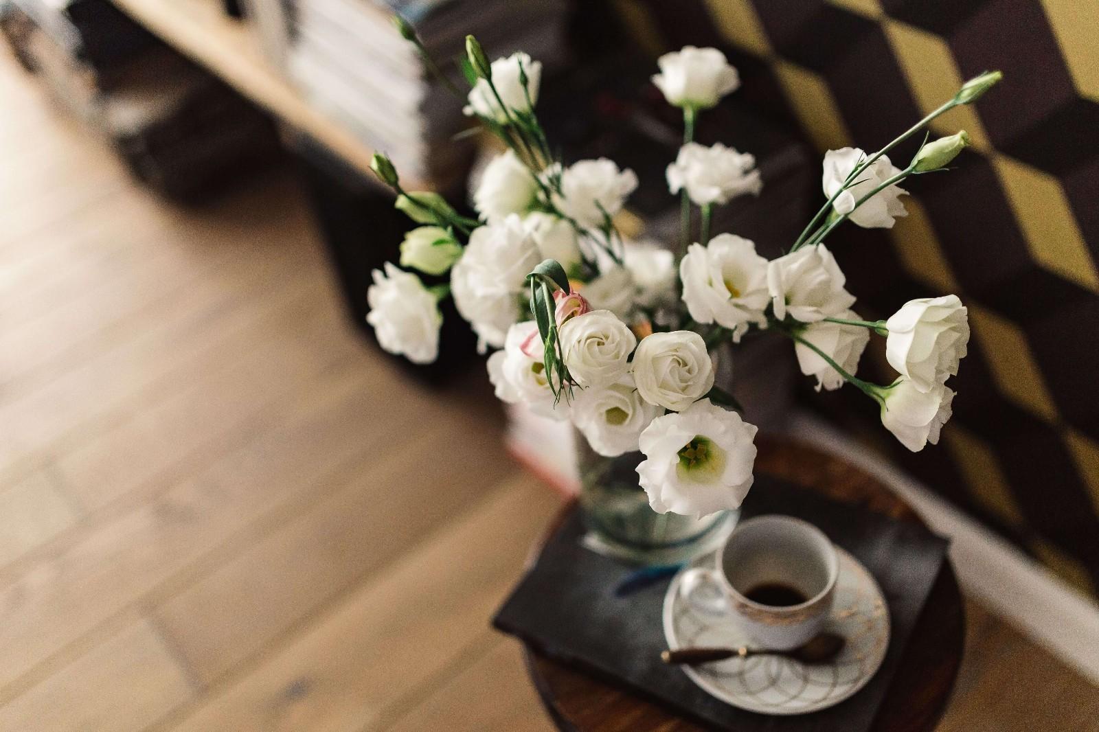 植物,鲜花