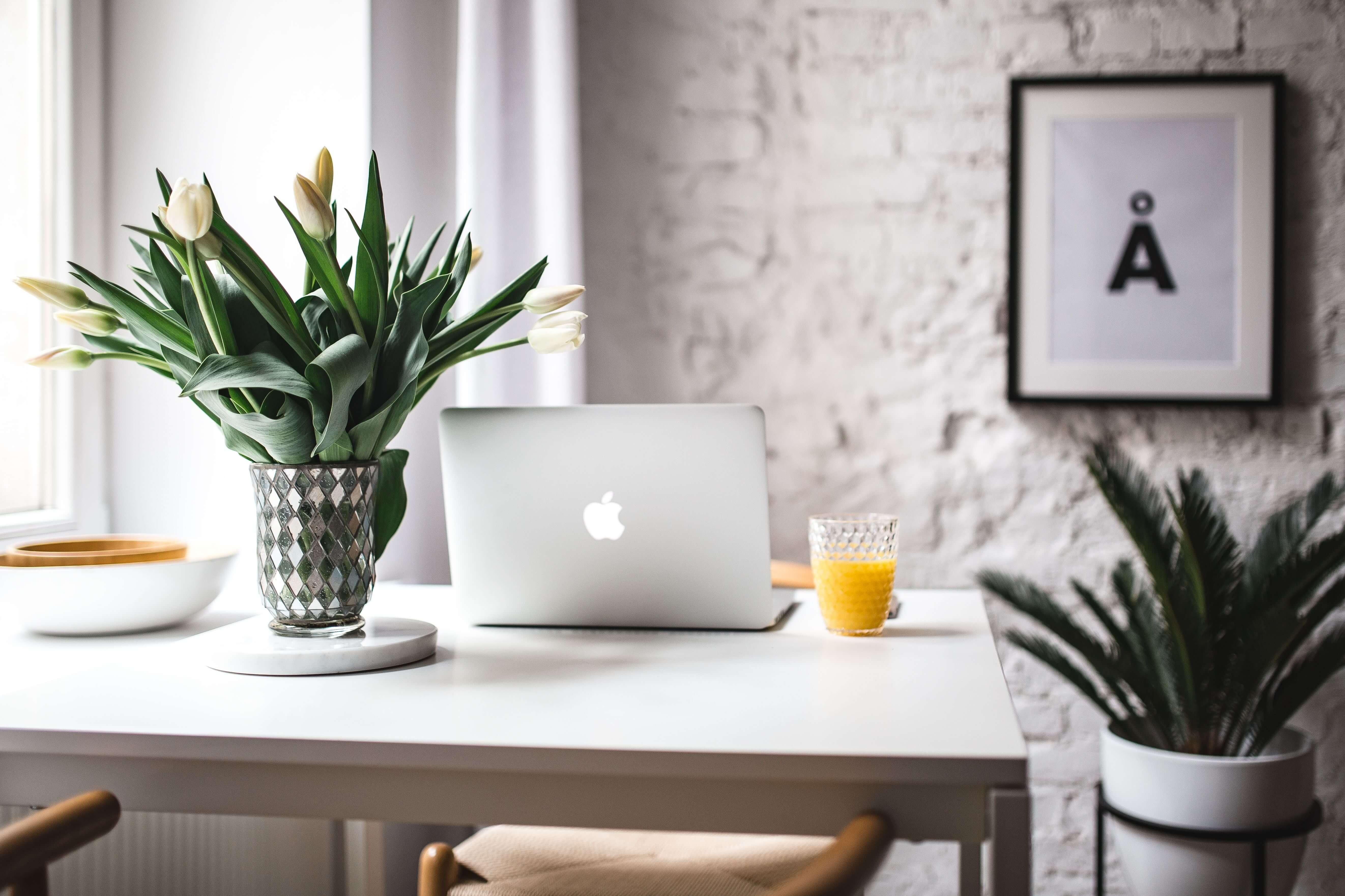 辦公桌,電腦,橙汁,植物,墻畫