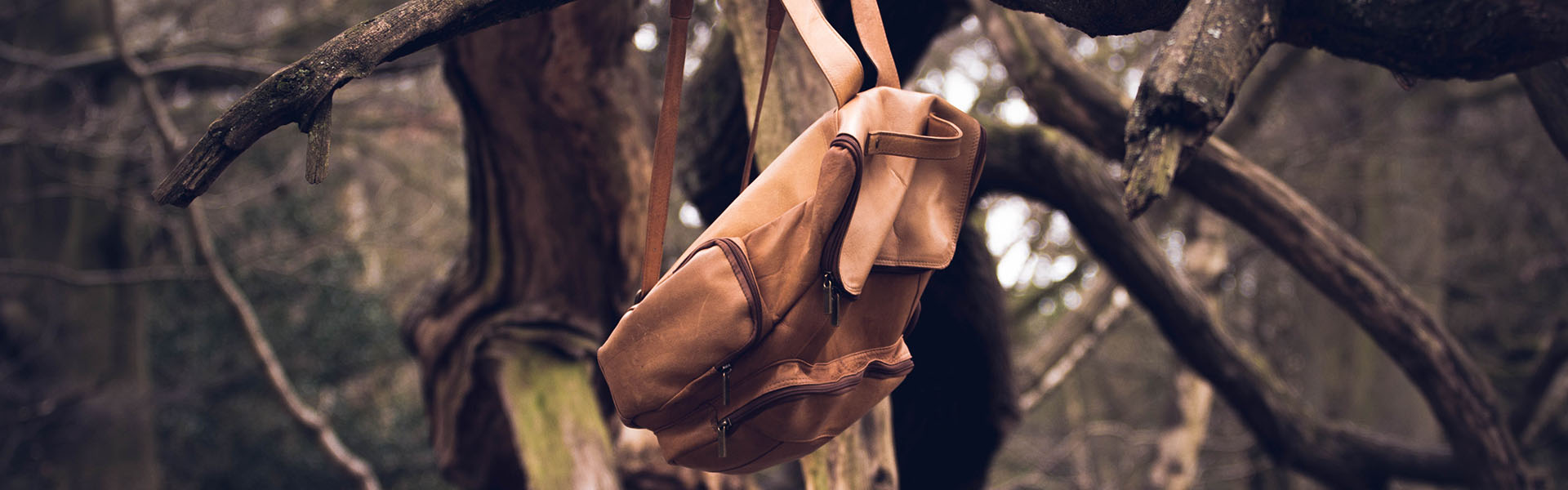 backpack-bag-branches-607180