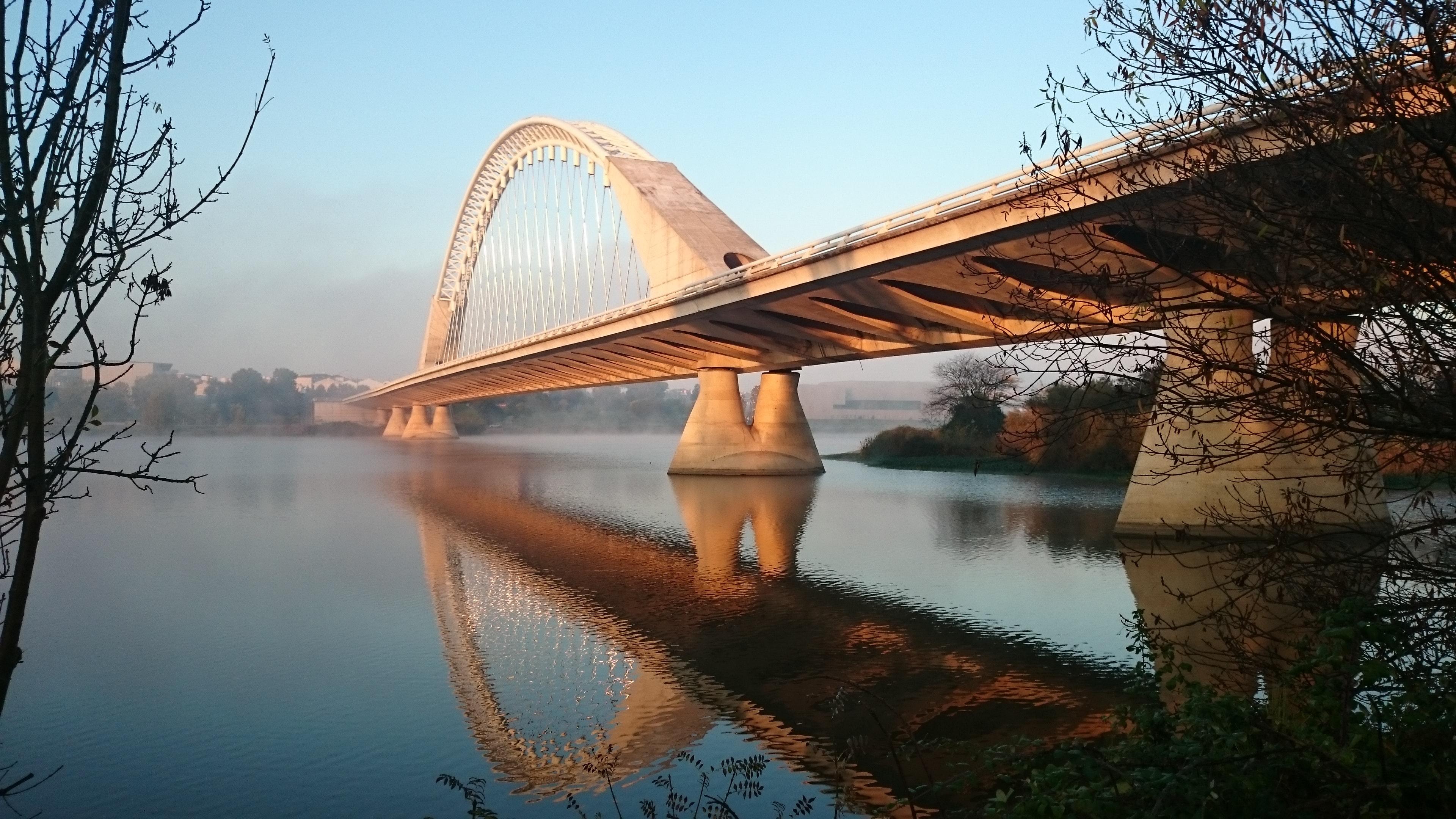 architecture-bowstring-arch-bridge-bridge-77630